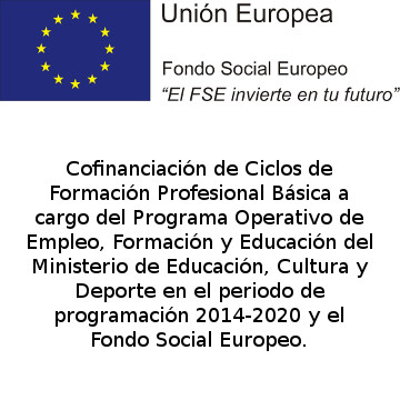 Logo-FSE-FPBasica